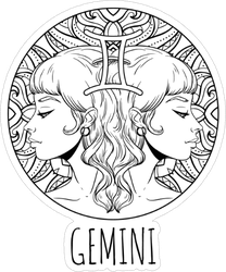 Gemini Artwork Sticker