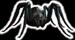 Giant Realistic Black Spider Sticker