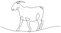 Goat In Continuous Line Art Drawing Sticker