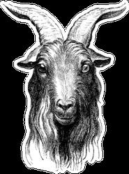 Goat, Vintage Engraved Illustration Sticker