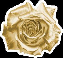 Gold Flower On A White Background Sticker