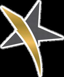 Gold Stripe Star Sticker