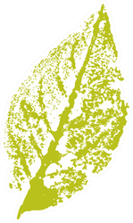 Gouache Stamp Of A Leaf In Green Sticker