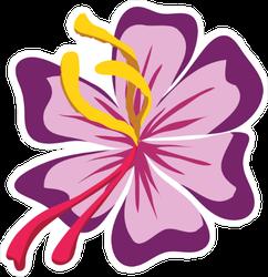Graphic Cartoon Purple Hibiscus Sticker