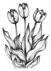 Graphic Illustration Of Three Tulips Sticker