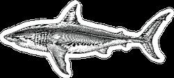 Great White Shark Hand Drawn Sticker