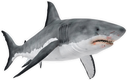 Great White Shark With Bloody Mouth Sticker