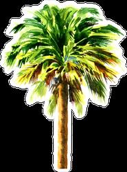 Green Beautiful Palm Sticker