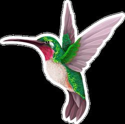 Green Hummingbird Isolated Illustration Sticker