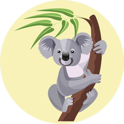 Grey Koala Bear On Branch Sticker