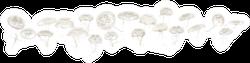Group Of Aurelia Aurita Jellyfish Against White Background Sticker