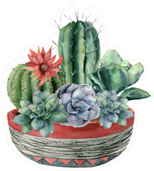 Group of Cacti and Succulents in Decorative Pot Sticker