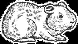 Hamster Rodent Pet Animal Sketch Sticker
