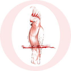 Hand-drawing Pink Cockatoo Sitting On The Branch Sticker