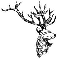 Hand Drawn Deer Sketch Sticker