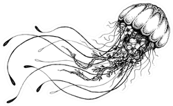 Hand Drawn Doodle Jellyfish Sticker