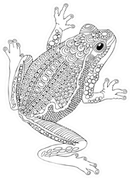 Hand Drawn Frog Sketch For Coloring Book Sticker