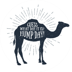 """Hand Drawn """"guess What Day It Is? Hump Day!"""" Camel Sticker"""