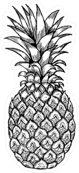 Hand Drawn Pineapple Fruit Sketch Sticker