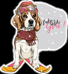 Hand Drawn Portrait Of Skiing Beagle Sticker