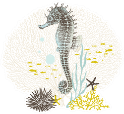 Hand Drawn Seahorse With Watercolor Texture Sticker