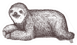 Hand Drawn Sloth Sticker