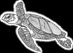 Hand Drawn Turtle Sticker
