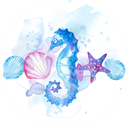 Hand Drawn Watercolor Composition Of Marine Life Seashell Sticker