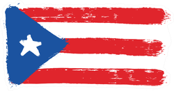 Hand Painted Puerto Rico Flag Sticker