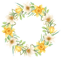 Hand-painted Watercolor Daffodils Wreath Sticker