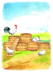 Happy Chicken Happy Farm Illustration Sticker