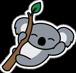 Happy Koala On A Branch Sticker