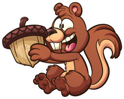 Happy Squirrel Holding A Big Acorn Cartoon Sticker