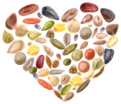Heart Shaped Seeds Sticker