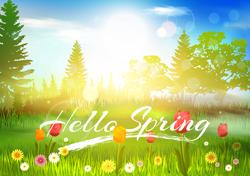 Hello Spring Meadow Sticker