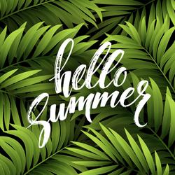 Hello Summer Palm Leaf Sticker