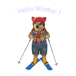 Hello Winter Dog On Skis Sticker