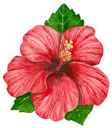 Hibiscus Flower And Leaves Sticker