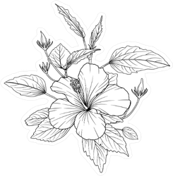 Hibiscus Flowers Sketch Sticker
