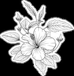 Hibiscus Flowers Sketch Sticker