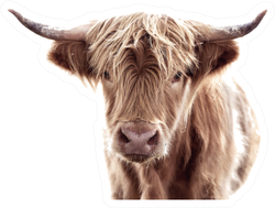 Highland Cow Brown Sticker