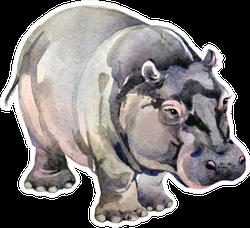 Hippo. African Animals. Watercolor Animal Illustration Sticker