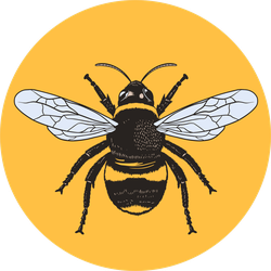 Honey Bee Circle Sticker