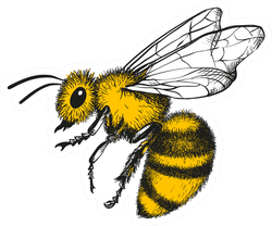 Honey Bee Engraving Sticker
