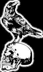 horror Skull Crow Black Illustration Sticker