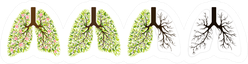 Human Lungs Respiratory System In The Form Of A Tree Sticker