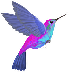 Hummingbird Blue Purple Isolated Illustration Sticker