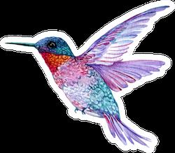 Hummingbird In Flight Bright Watercolor Illustration Sticker