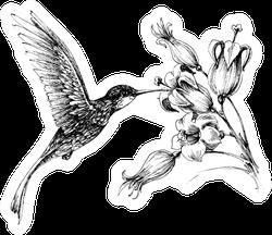 Hummingbird In Flight Drawing Sticker