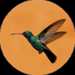 Hummingbird On Orange Background Sticker